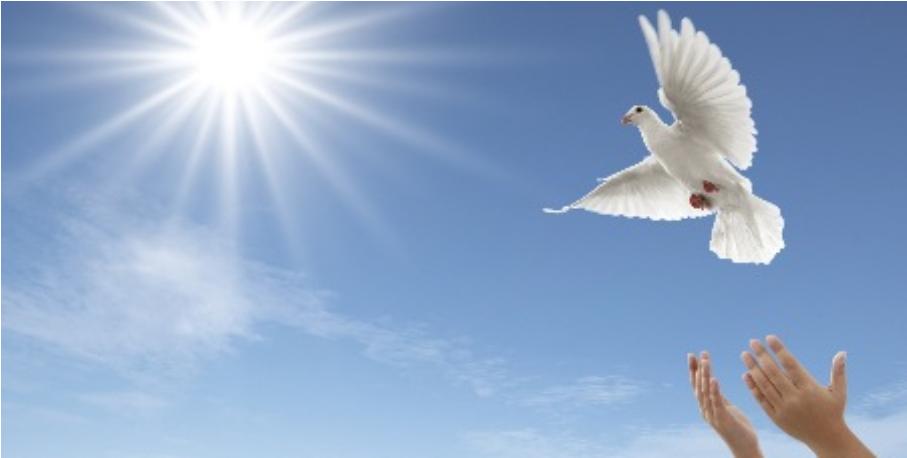 Image result for Bereavement Doves Clip Art